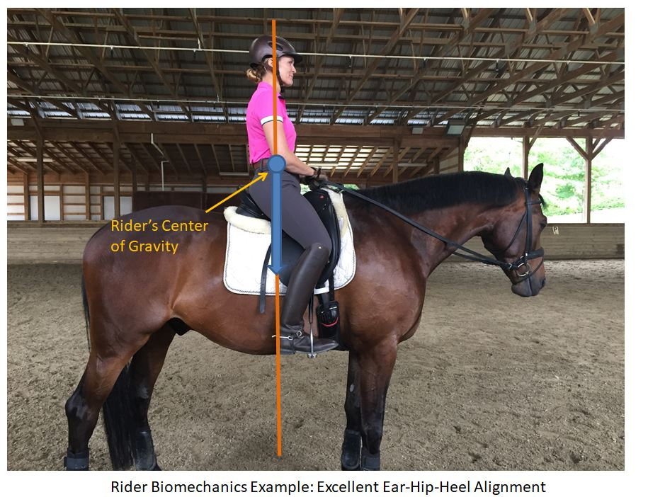 horseback trail riding tips